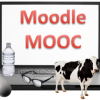 Picture of a cow and the words Moodle MOOC